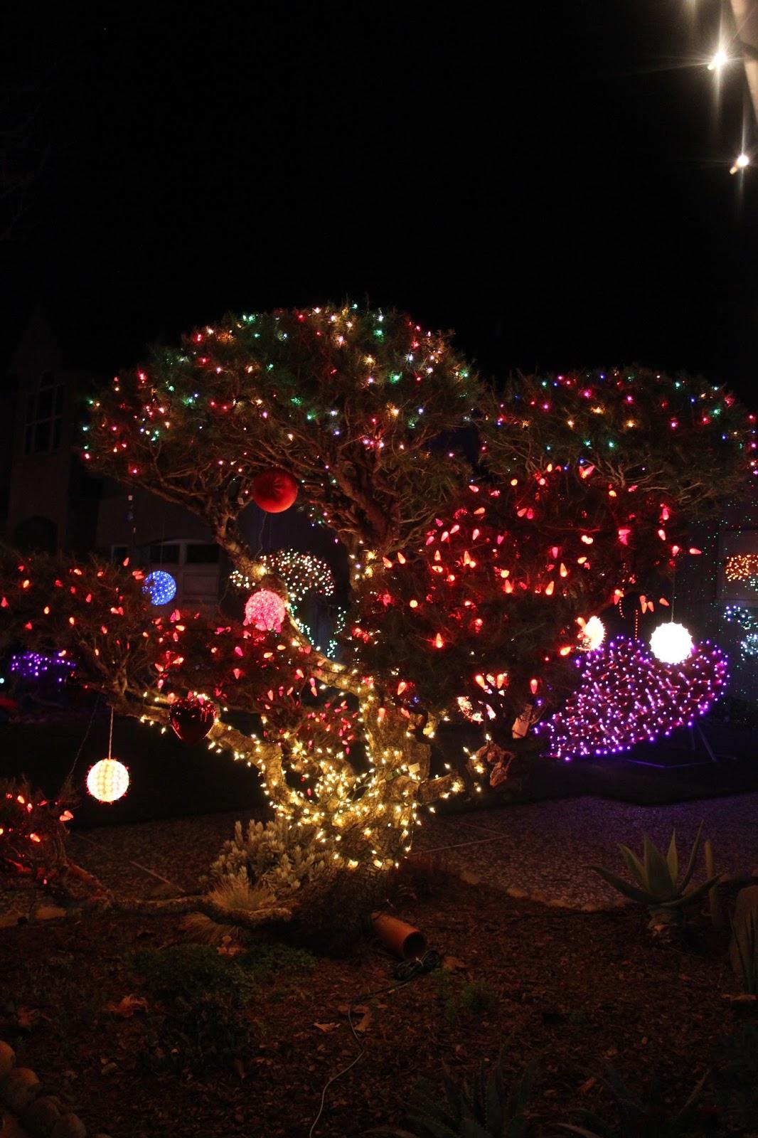 #A77624 Les Tribulations D'une Famille Française En Californie  5329 décorations de noel aux etats unis 1066x1600 px @ aertt.com