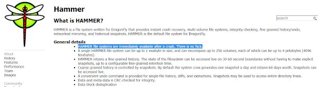 HAMMER file systems fica disponível imediatamente depois de uma quebra. Não há necessidade de uso do fsck para repará-lo.