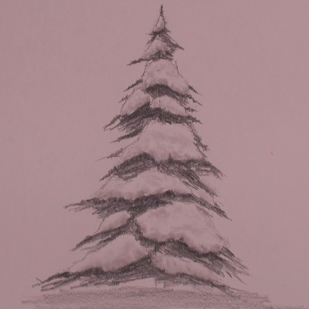 20 Drawing Snow Pine Pictures And Ideas On Meta Networks