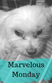 Marvelous Monday, October 2