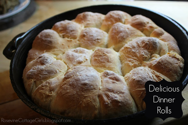 Dinner Rolls #Bread #Recipe #Rolls #Yummy
