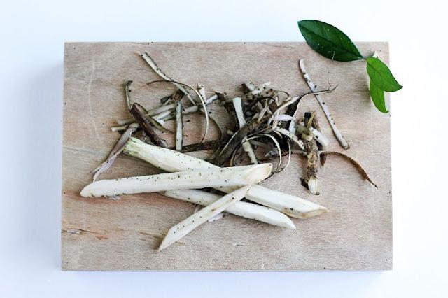 Điều trị mụn trứng cá với rễ Ngưu Bàng vị thuốc cực hay