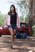 Disha Pandey Actress Stills-thumbnail-4
