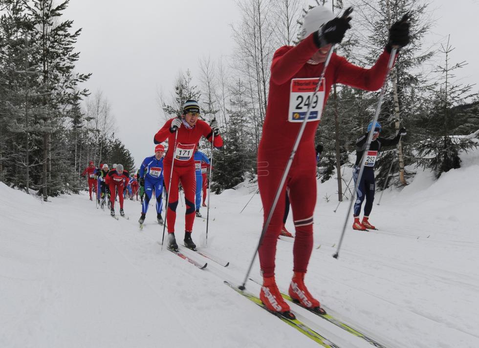 thorleif haugs minneløp 2012