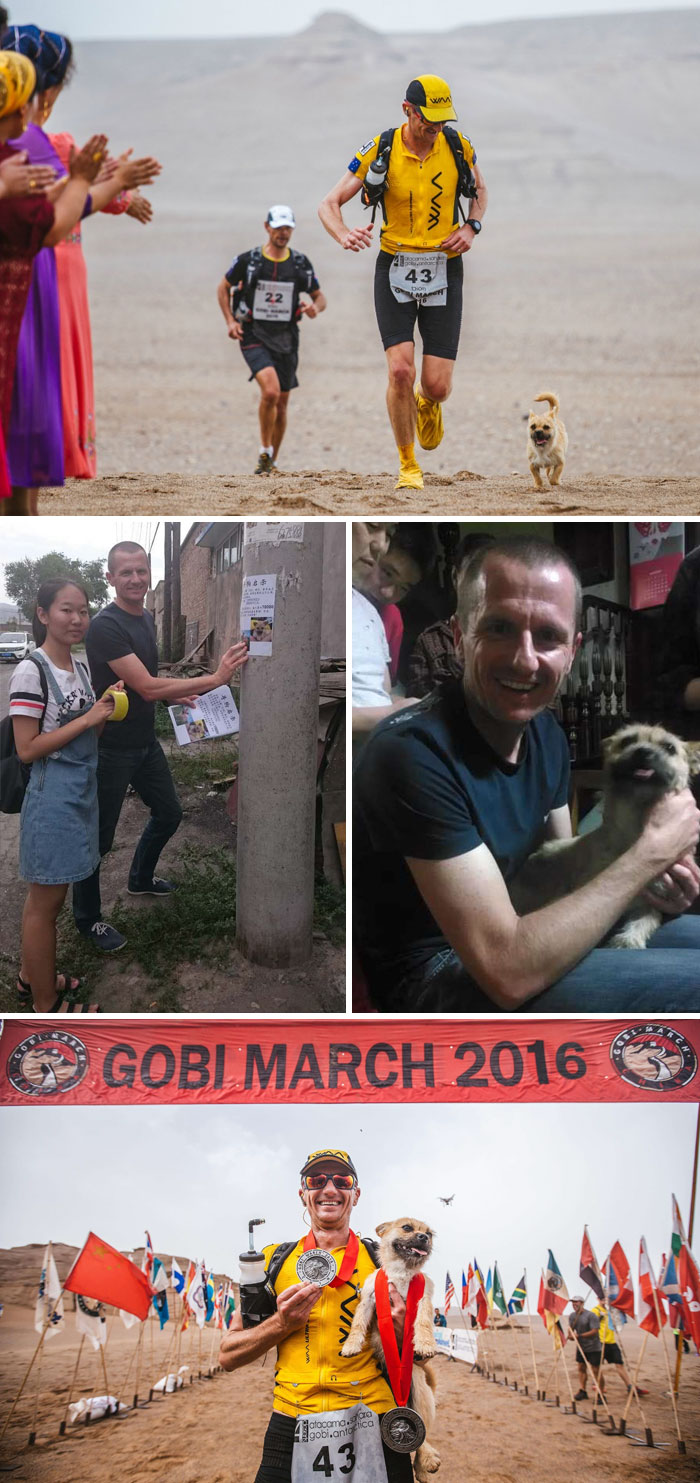 40 Times 2016 Restored Our Faith In Humanity - Stray Dog Who Joined Runner On 155-Mile Race Disappears So The Athlete Flies To China To Find Him