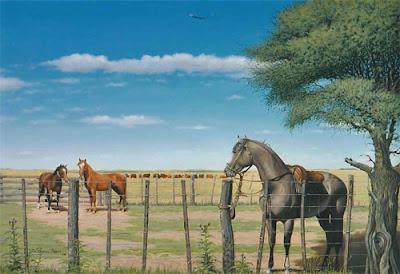 caballo en campo