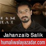 http://www.humaliwalayazadar.com/2016/10/jahanzaib-salik-nohay-2017.html