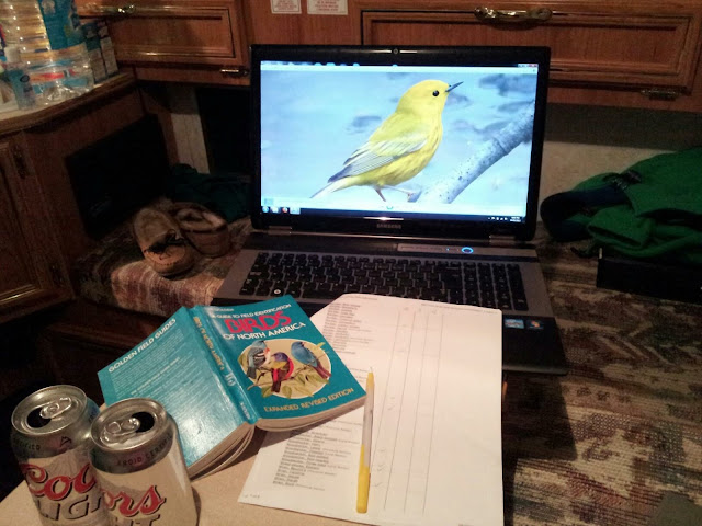 Processing Bird Photography Images in Photoshop