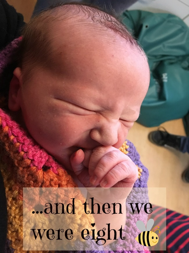 and-then-we-were-eight-text-over-image-of-bee-just-a-few-hours-old