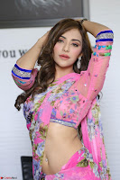 Actress Angela Krislinzki in Pink Saree Blouse Exclusive Pics March 2017 ~  044.JPG