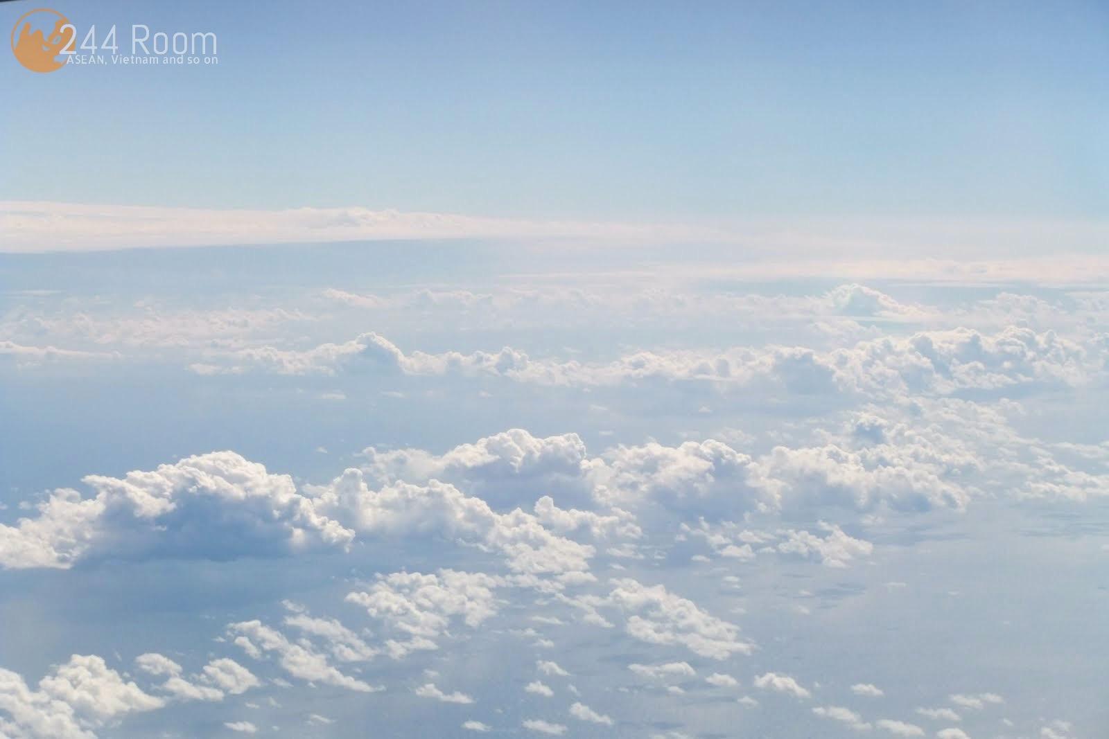 JAL Flight 002 window