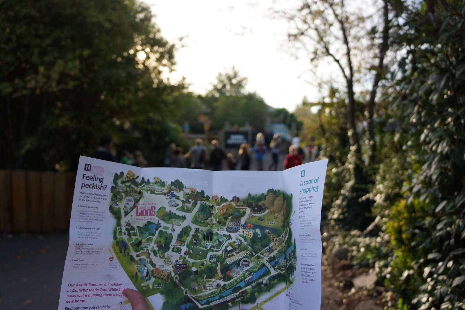 szl london zoo with toddlers map