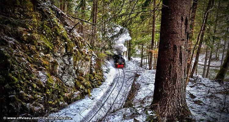 Mocănița de pe Valea Vaserului pe timp de iarna