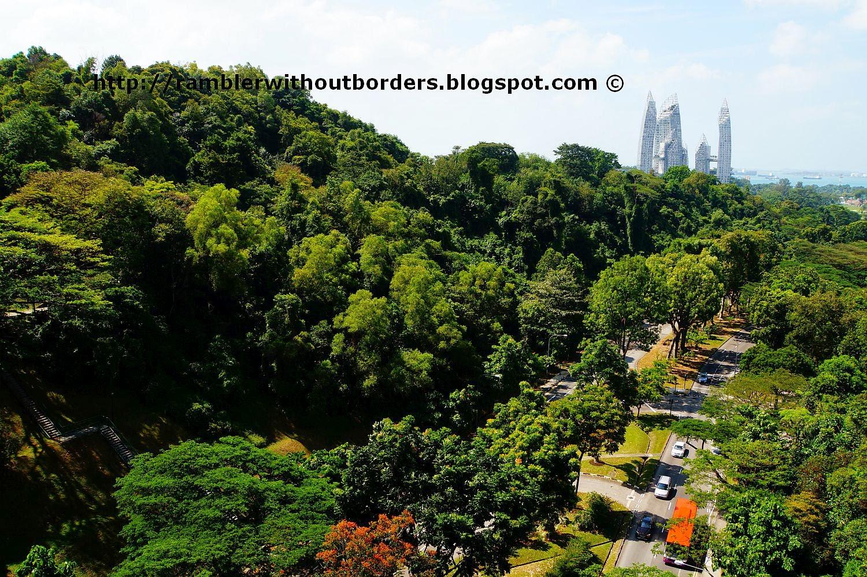 Henderson Road as viewed from Henderson Waves Bridge, Southern Ridges, Singapore