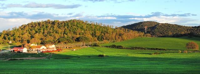 Informações sobre a Azienda Agricola Le Gode em Montalcino