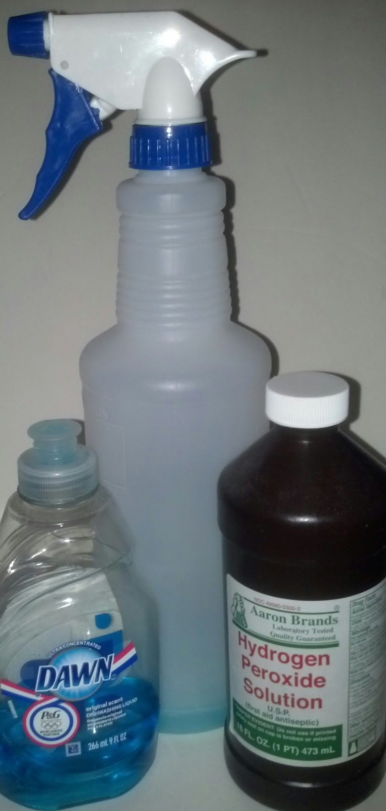 Mint Juleps 'n Muddin': Best Homemade Stain Remover