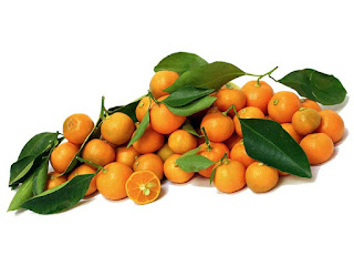 Calamondins Fruit Pictures