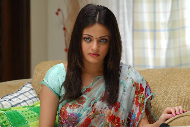 Sneha Ullal sexy in saree images