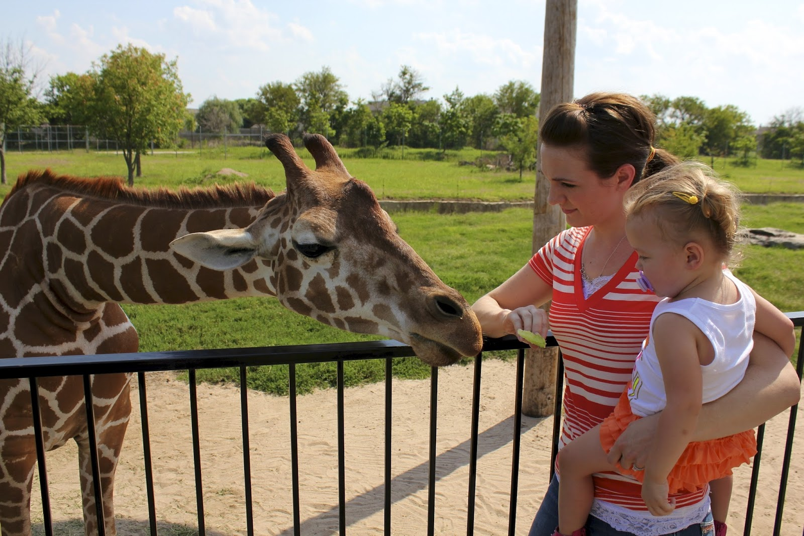 the Stowell's: Tanganyika Wildlife Park