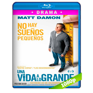 Pequeña gran vida (2017) Full HD 1080p Audio Dual Latino-Ingles