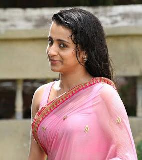 tamil-actress-hot-saree