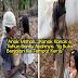 Ayahnya Buta.....Kanak- Kanak 6 Tahun Ini Bawa Ayahnya Ke Tempat Kerja Menggunakan Sebatang Kayu