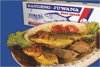 Tempat Wisata Kuliner di Semarang, Bandeng Presto Juwana