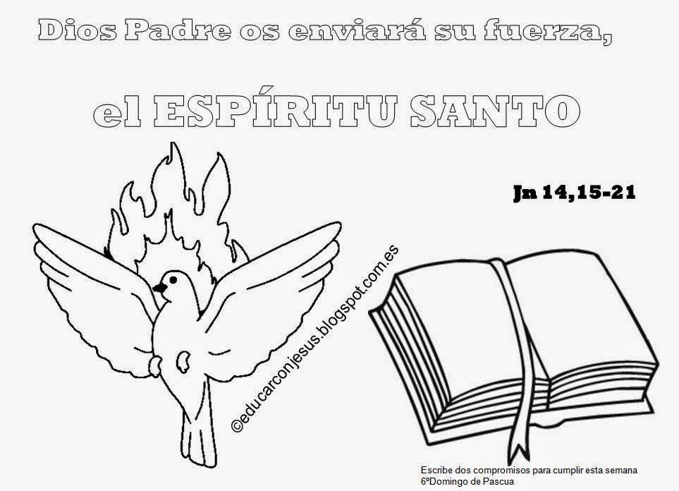 Parroquia La Inmaculada: Actividades Para El VI Domingo De