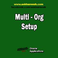 Multi - Org Setup, www.askhareesh.com