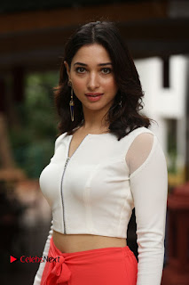 Actress Tamannaah Pictures at Abhinetri Movie Interview  0164