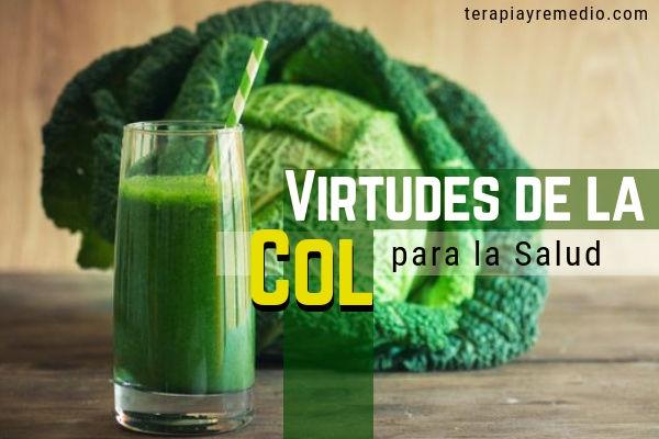 La col es una planta medicinal con virtudes medicinales excepcionales