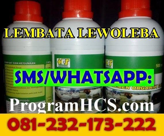 Jual SOC HCS Lembata Lewoleba