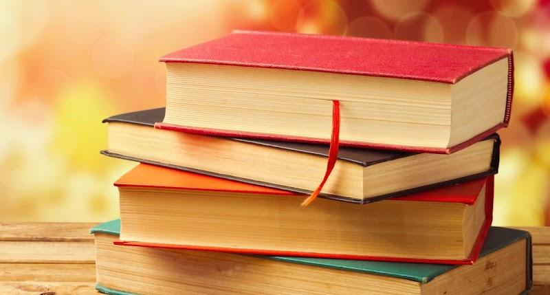 Опрос. Какой жанр литературы вы читаете охотнее, чем остальные?