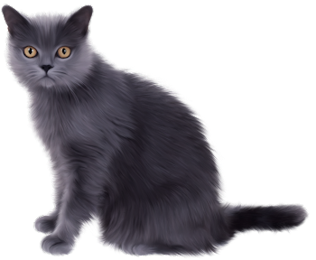 ORIGINAL ART | FAMILY RENDERS: PNG-GATO GRIS