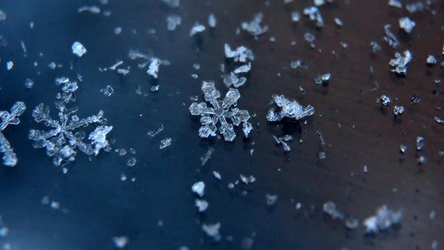 Free Download Beautiful Winter
