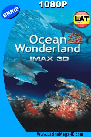Un Mundo Maravilloso En El Oceano 3D  (2003) Latino HD 1080P ()