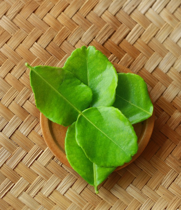 southeast asian spices and herbs guide kaffir lime leaf
