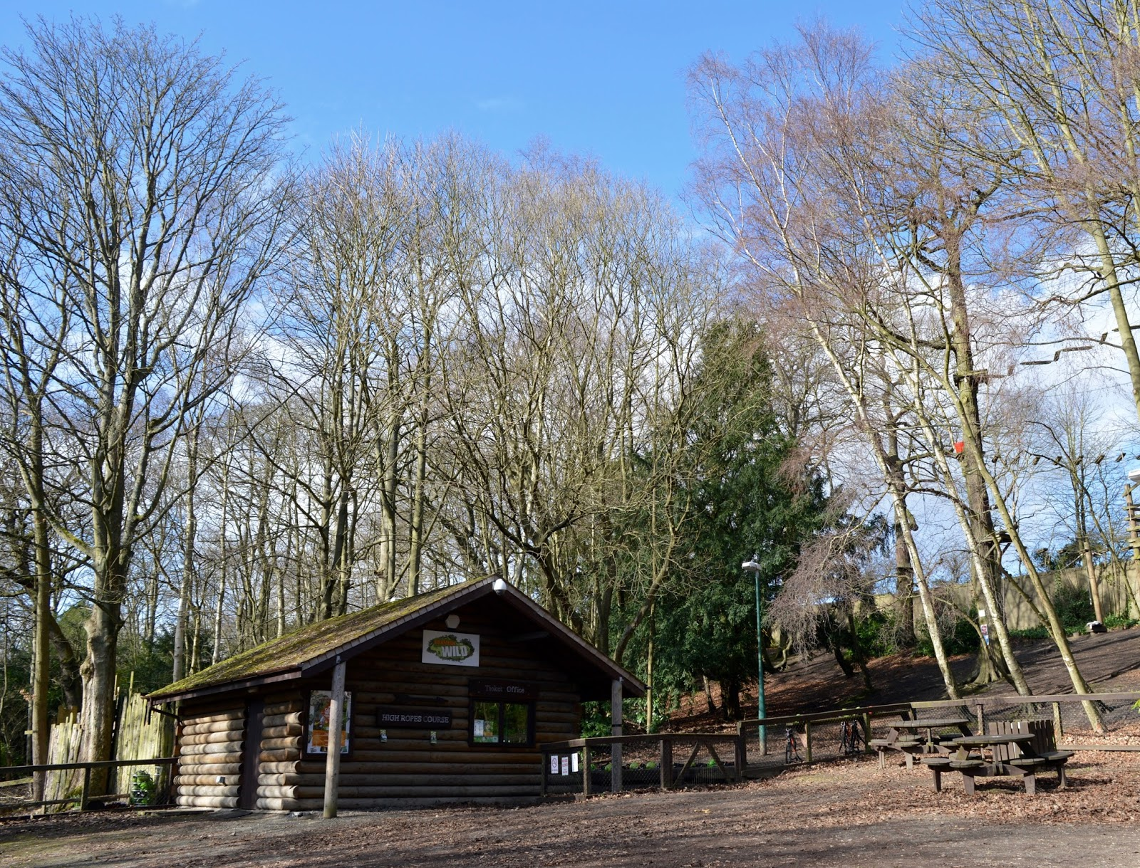 Beamish Wild | School Holiday Club & Activities in County Durham | North East England - reception