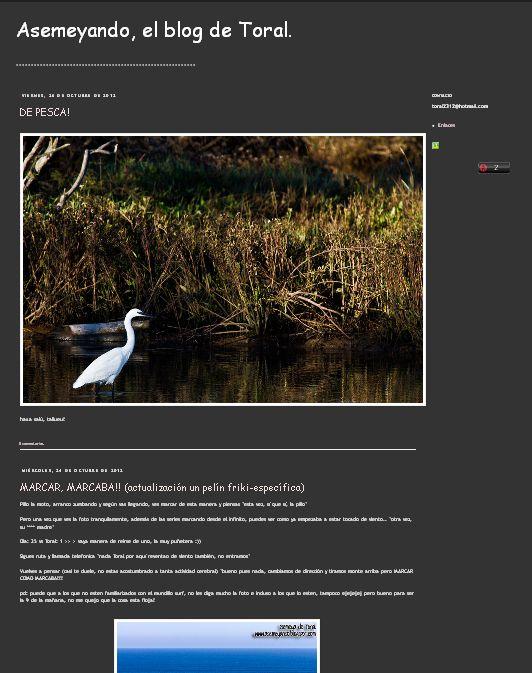 El Blog de Toral