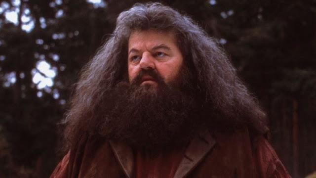 Universal lança teaser da nova montanha russa inspirada na franquia Harry Potter