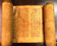 Il rotolo della Torah alla BUB