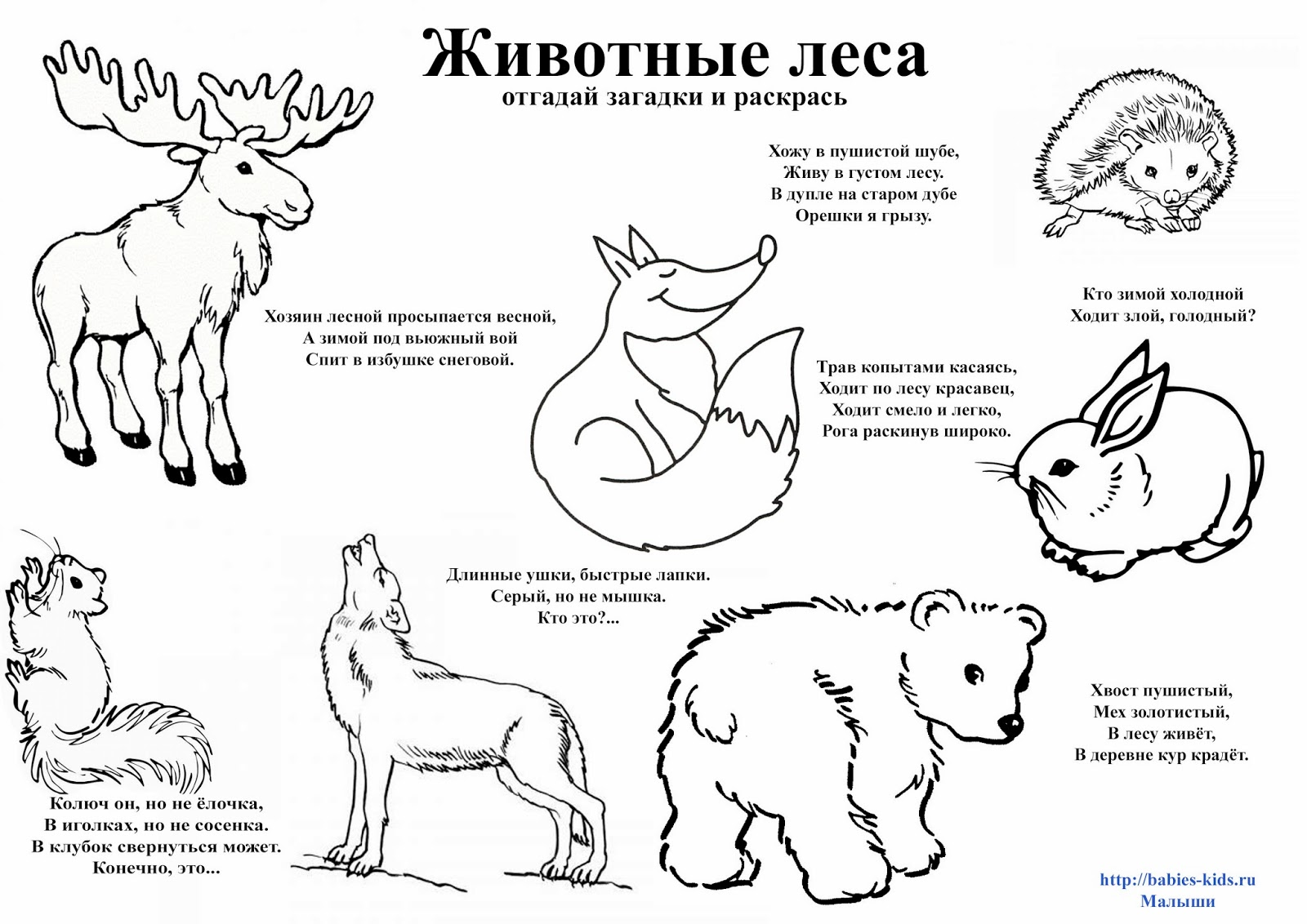 Winter Animals That Hibernate Coloring Pages Winter Best