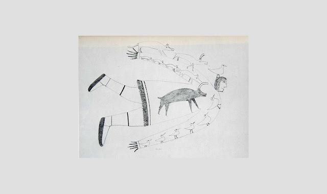 Anthurus d'Archer - Fossiles 1