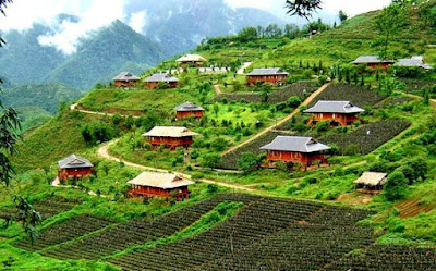 Discover Rose Valley in Sapa
