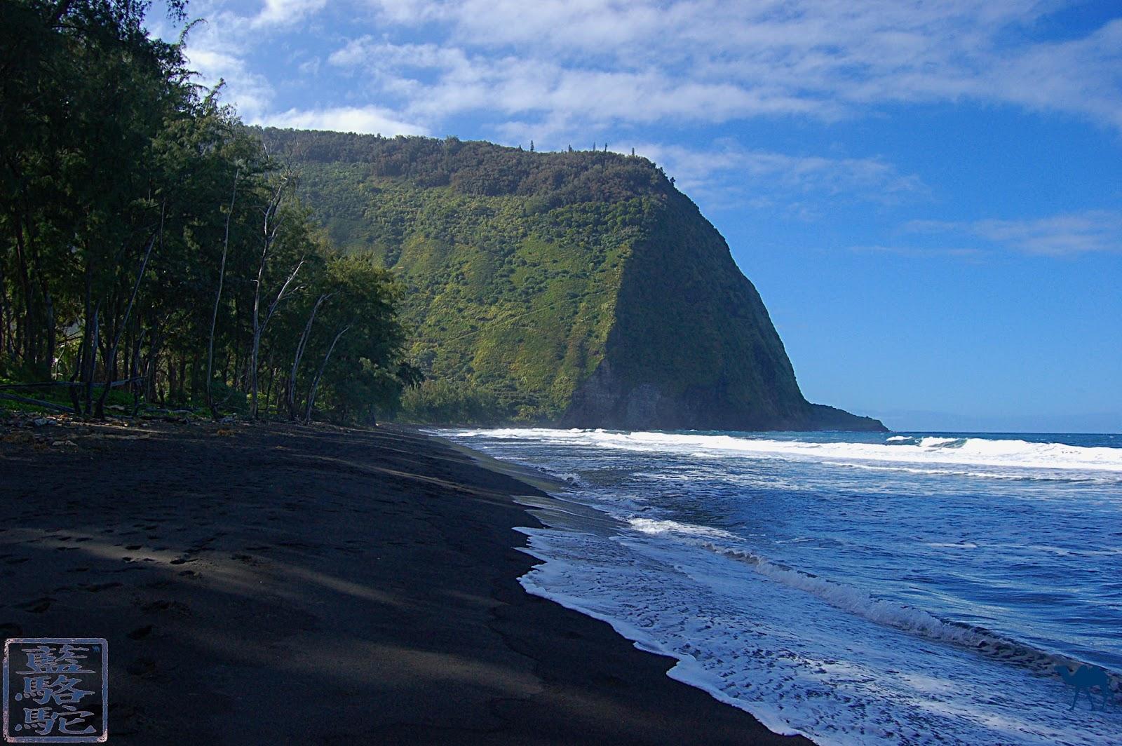 Le Chameau Bleu - Blog Voyage Hawaii - Photos Plage Hawaii
