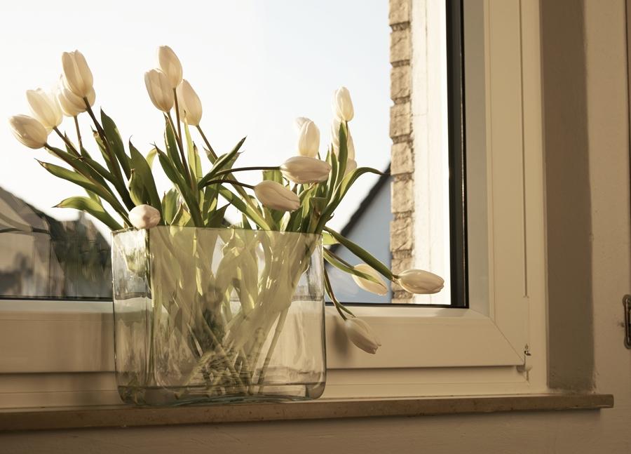 Blog + Fotografie by it's me fim.works - weißeTulpen mit lilafarbenen Spitzen im Glashafen
