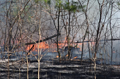 fire, controlled or not, has a long history in the St. Croix valley