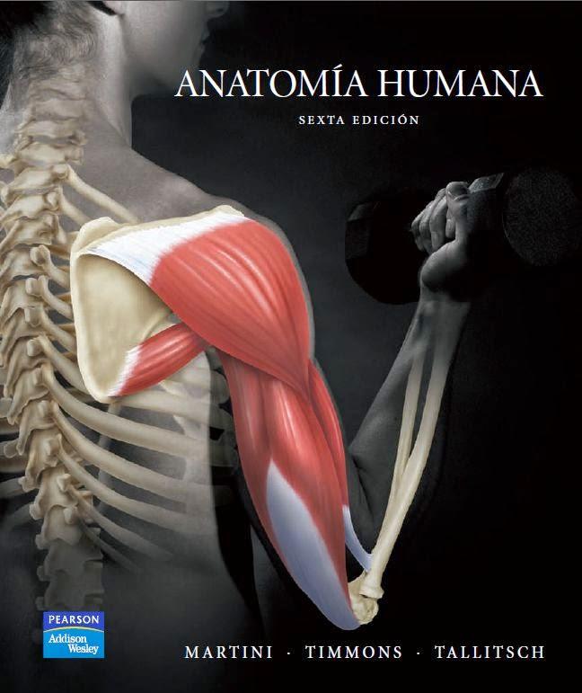Anatomía Humana 6ª Edición - Martini, Timmons, Tallitsch | booksmedicos