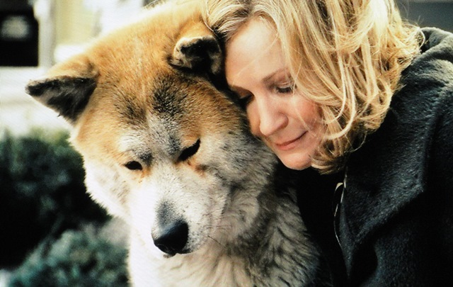 Image result for hachi dog's tale
