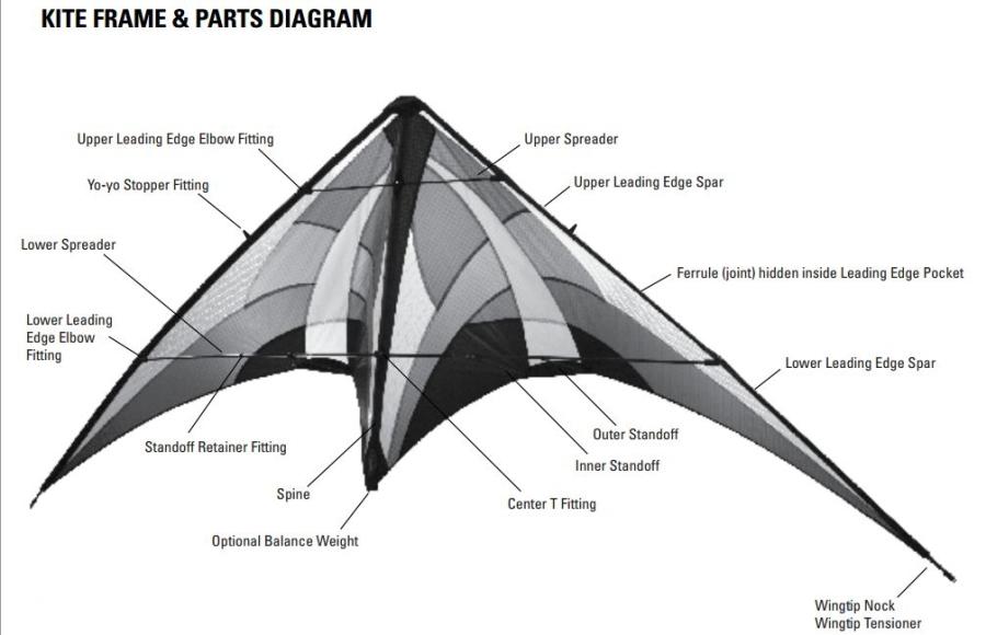 Kitekids Net  Kite Anatomy